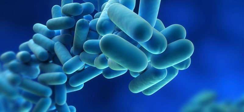 What-is-Legionella