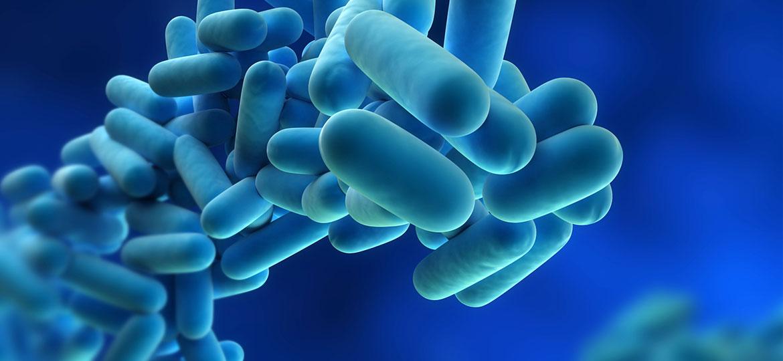 What-is-Legionella
